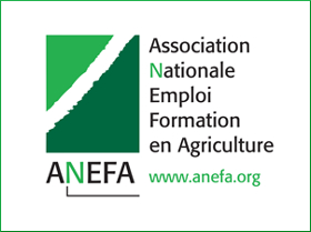 Le logo de l'association ANEFA