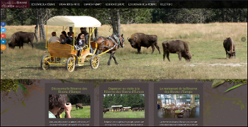 Capture d'écran du site de la réserve des bisons d'Europe