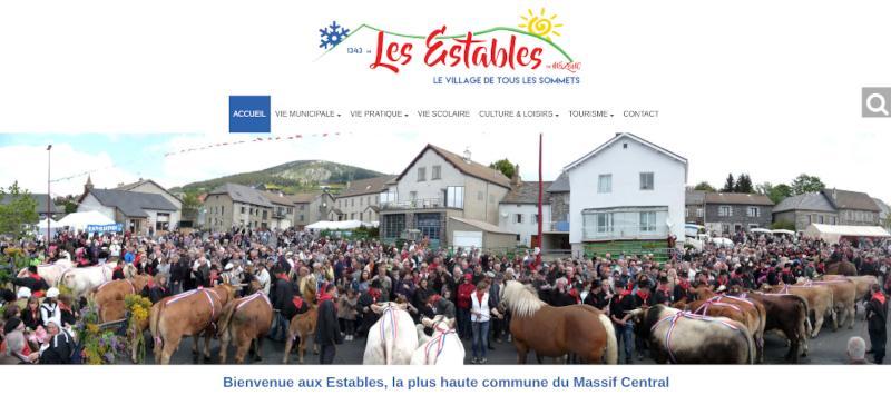 Capture d'écran de l'accueil du site web des Estables