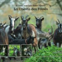 Il était une fois, la Chèvre des Fossés, la couverture du livre
