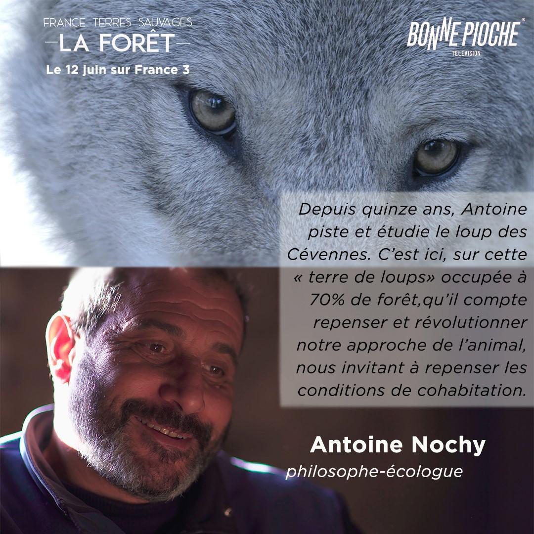 Le flyer du documentaire sur la forêt française