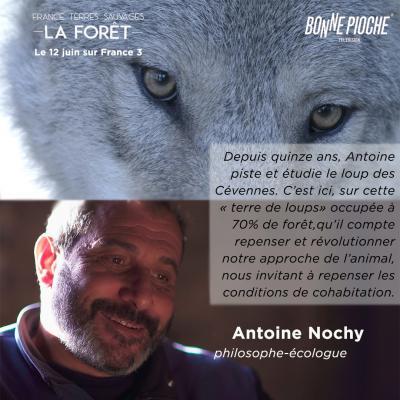 Flyer d'annonce du doc, de Bonne Pioche Prod, sur la forêt