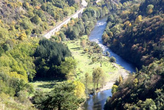 Les gorges de l'Allier, l'un des lieux de vie de la loutre d'Europe