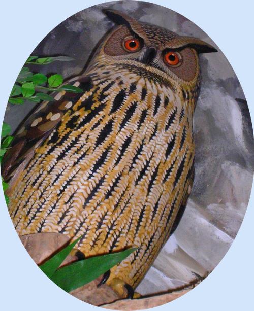 Le hibou Grand-Duc du diorama de la Maison des Oiseaux
