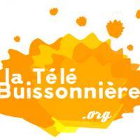 La Télé-Buissonnière