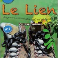 Leliennumero9 1