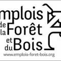 Le logo de bourse à l'emploi de la forêt et du bois