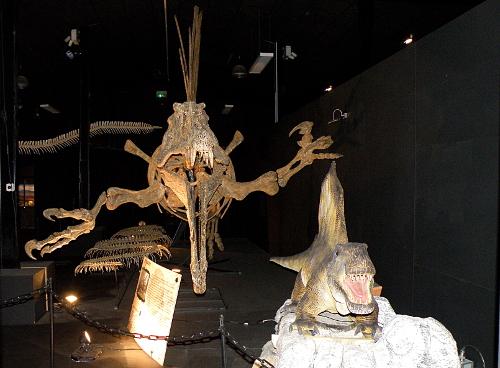 L'un des squelettes et des animatronics
