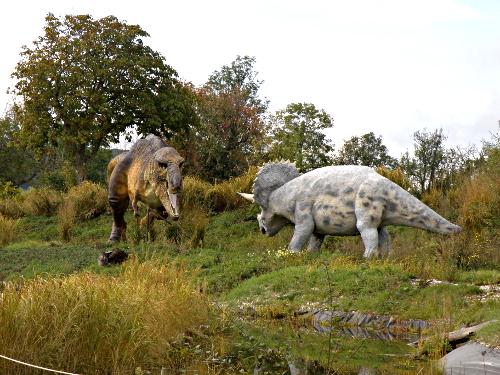 Dans le parcours extérieur du parc, tyrannosaure et triceratops se font face