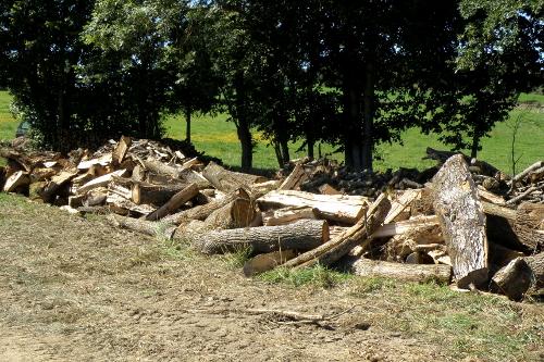 Un andain de bois à fendre