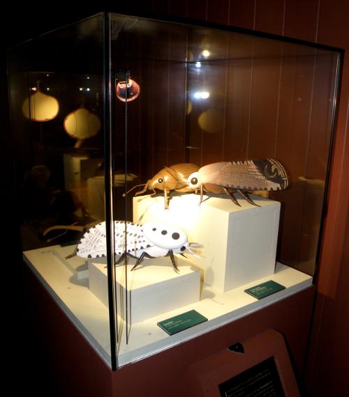 Des maquettes de parasites du châtaignier