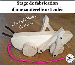 Stagesauterelle